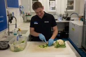 Ernie's food preparation at SEA LIFE Manchester.
